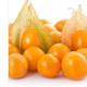 水果种子、种苗