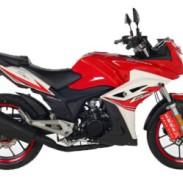 宗申 Z-oneR ZS150-48A(赛道版)摩托车跑车街车