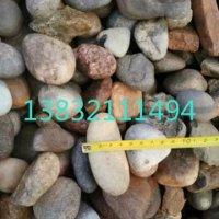 供应用于变压器鹅卵石|水处理鹅卵石|公园鹅卵石的北京2-4mm水处理鹅卵石厂家