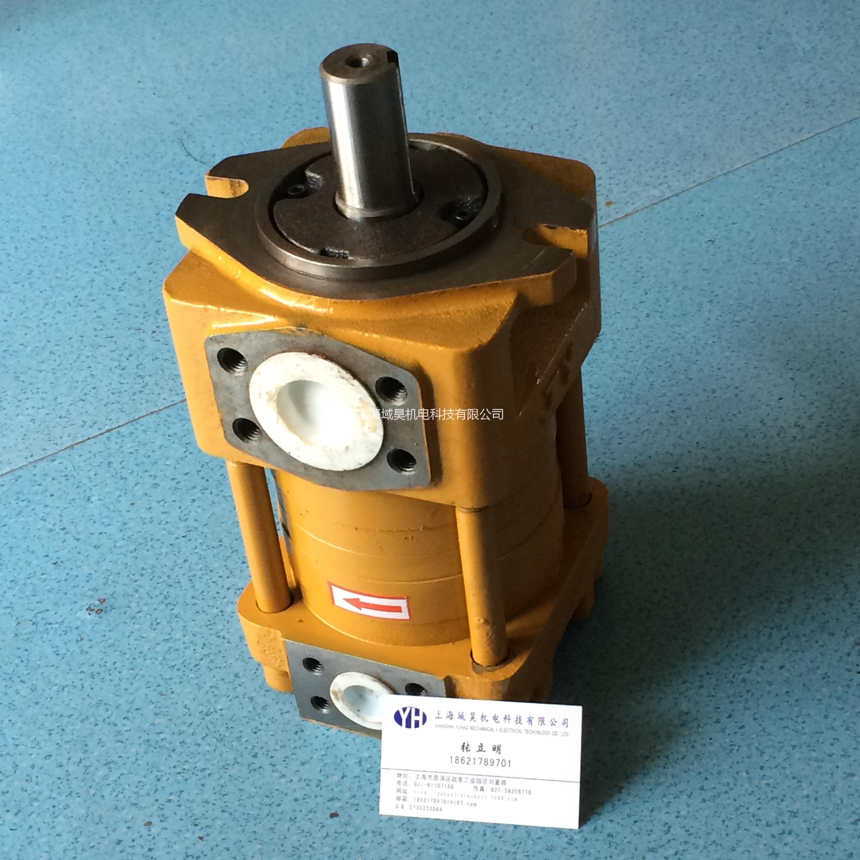供应剪板机NT3-G25F齿轮泵