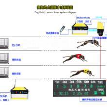 供应湖南卡丁车比赛电子计时仪系统供应批发