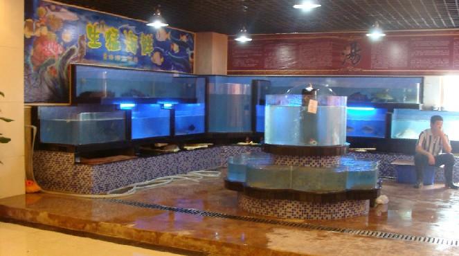 供应海鲜池订做酒店餐饮制冷海鲜鱼池