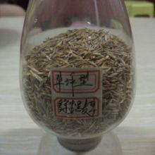 供应黑麦草,四季青,绿化草种,园林绿化养护用品批发