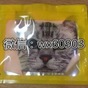 猫猫防走光内裤图片