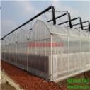 供应GSW-8430型连栋薄膜温室 育苗温室安装 甘肃温室大棚销售 温室生产厂家