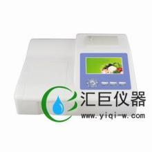 供应二氧化硫检测仪HHX-SJ10EYHL