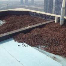 供应龙岗屋顶隔热材料,宝安屋顶隔热材料,盐田屋顶隔热材料