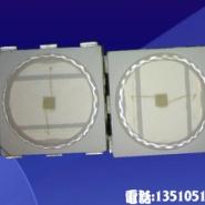 LED5050贴片绿光图片
