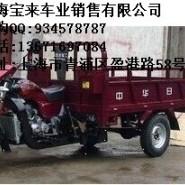 发动机三轮互换正三轮摩托车图片