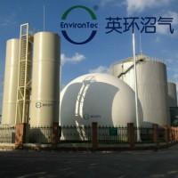 英环沼气生物脱硫设备BDS50