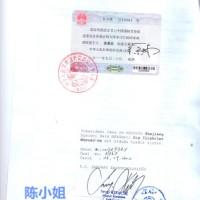 供应用于清关的土耳其商业文件大使馆加签专业办理/土耳其商业文件大使馆加签专业办理价格