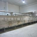 工业污泥网带式干燥箱10t/d图片