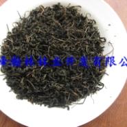 湖北青钱柳茶/青钱柳茶图片