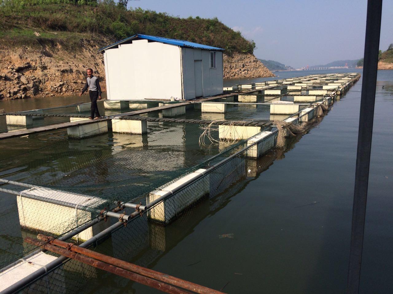 沅江渔业用品-厂家批发报价价格