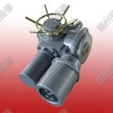 供应机电一体化电动执行器DZW15-WK、机电一体化电动执行器 机电一体化DZW15-WK电动头