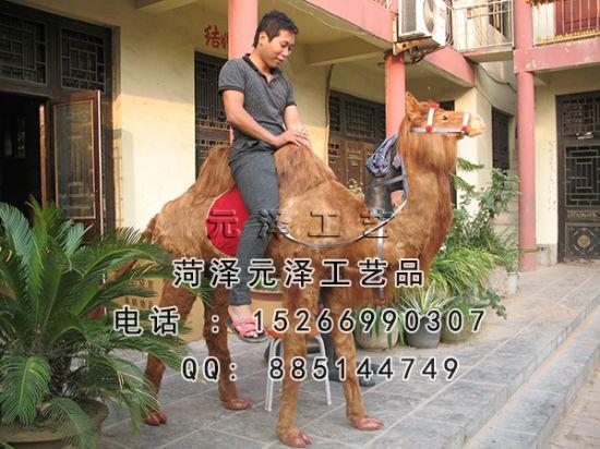 供应博昂仿真动物模型大骆驼