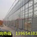 供应合肥温室大棚,安徽合肥温室大棚,合肥温室大棚工程
