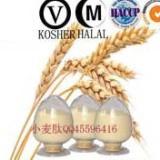 供应中食都庆牌新资源食品小麦低聚肽-生产厂家-供应厂家