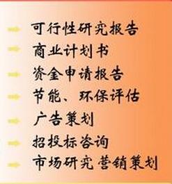 济宁可研报告图片/济宁可研报告样板图 (4)