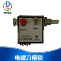 DSN3-BDZ(Y)电磁刀闸锁图片