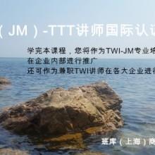 供应用于培训的TWIJMTTT讲师认证培训批发