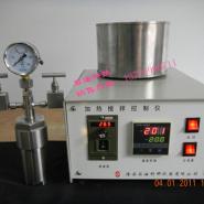 电加热反应器搅拌控制仪图片