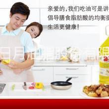 供应调和油玉树优质食用油营养植物油5L20L20KG量大从优批发