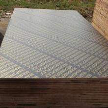 供应建筑模板,高档建筑模板,建筑覆模