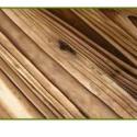 表面碳化木打特价图片