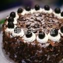 供应黑森林蛋糕