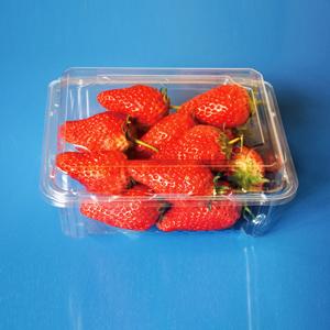 供应500g草莓包装盒/塑料盒
