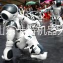供应用于的送餐机器人,跳舞机供应用于的送餐餐机器人,跳舞机器人