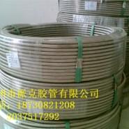 铁氟龙软管SAE100R14图片