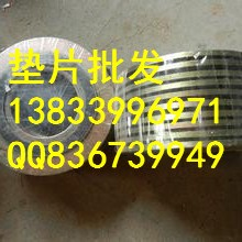 供應用于法蘭的金屬石墨墊片DN32PN1.6 河北人孔橡膠墊片生產廠家圖片