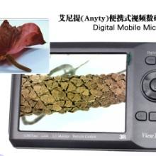 供应艾尼提便携式视频数码显微镜批发