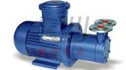 CW型磁力漩涡驱动泵图片