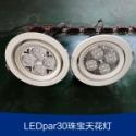 LEDpar30珠宝天花灯图片