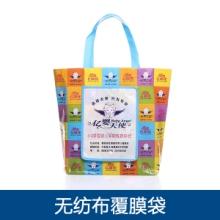 专业供应 无纺布覆膜袋 超市环保购物袋 无纺布礼品袋图片