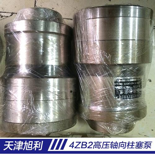 4ZZB2高压轴向柱塞泵厂家供应图片/4ZZB2高压轴向柱塞泵厂家供应样板图 (4)