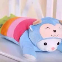 供应合园儿童可爱花瓣抱枕玩具枕头两用,花瓣抱枕玩具枕头两用报价,花瓣抱枕玩具枕头两用新款包邮