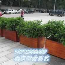 供应用于防腐木花盆|防腐木花箱|防腐木花架的防腐木花盆花箱花池制作图片