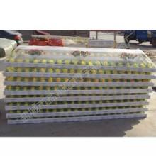 供应水晶冰棺材,厂家直销耐高温型精品冰棺批发