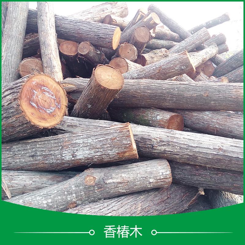 菏泽启林木业供应用于门窗|室内装修的香椿木、装修木材|香椿木原木批发