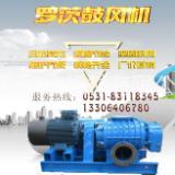 供应用于污水处理的罗茨风机,江苏地区罗茨风机总代理