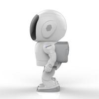 邦世(BONSE)智能网络摄像头