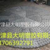 造球盘衬板 供应大明塑胶造球盘衬板