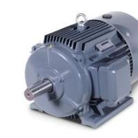 供应用于无的1MT0001步电动机/1MT0001价格/防爆电机/专业生产厂家/厂家直销批发价格/价格优惠/物美价廉