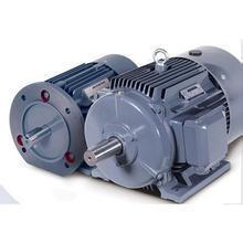供应1TL0001低压交流异步电动/低压异步电动机价格/厂家批发价格/专业低压异步电动机/价格优惠/欢迎咨询