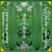 可以生吃的水果冬瓜, 水果冬瓜种子, 是无公害蔬菜种植的理想选择批发