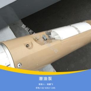 加油站潜油泵图片